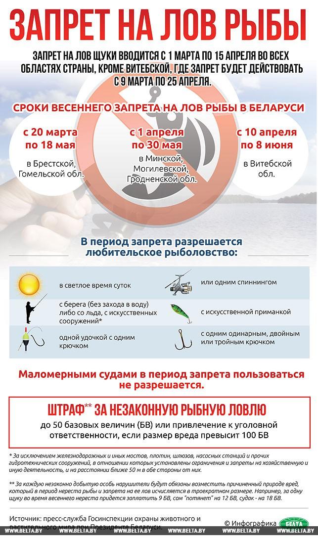 Закон о запрете рыбалки в нерест
